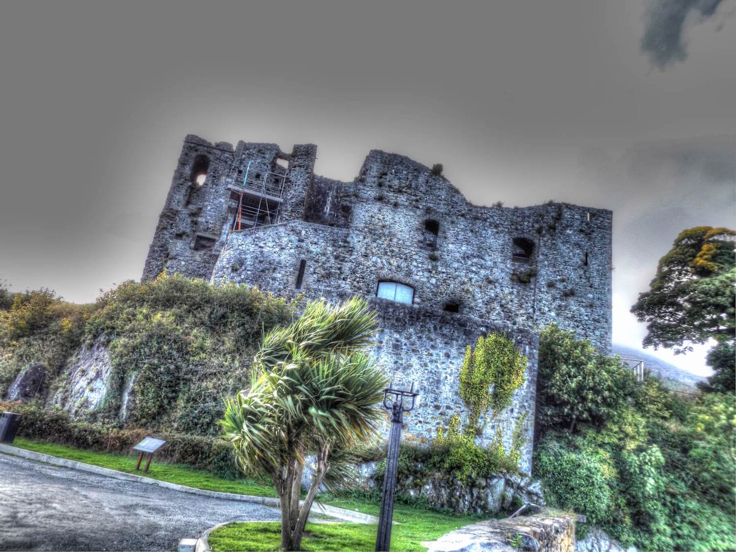 Carlingford by drone